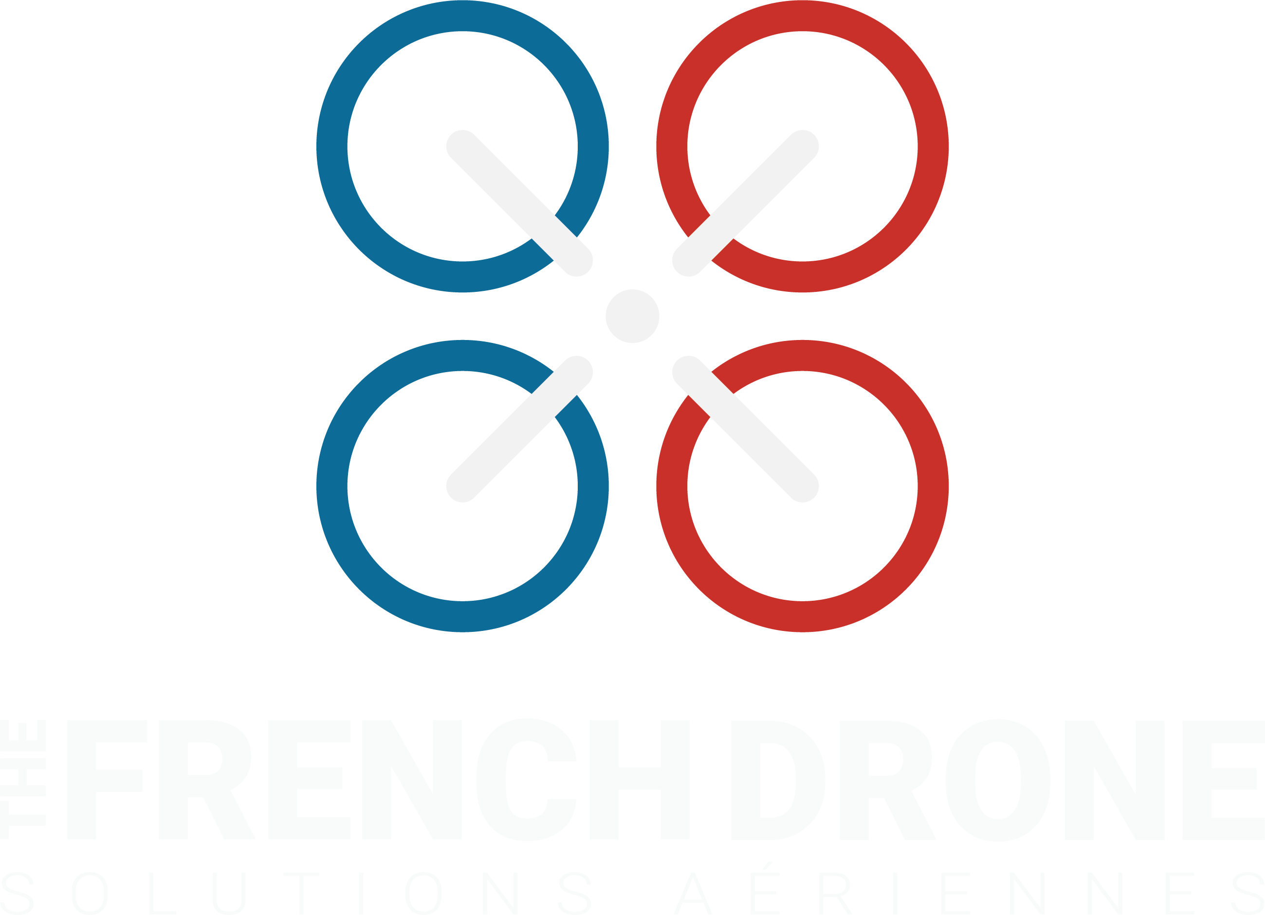 Logo The French Drone